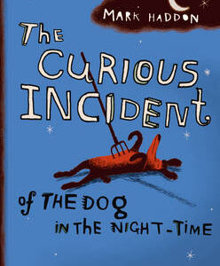 THE CURIOUS INCIDENT OF THE DOG IN THE NIGHT TIME PB B FORMAT
